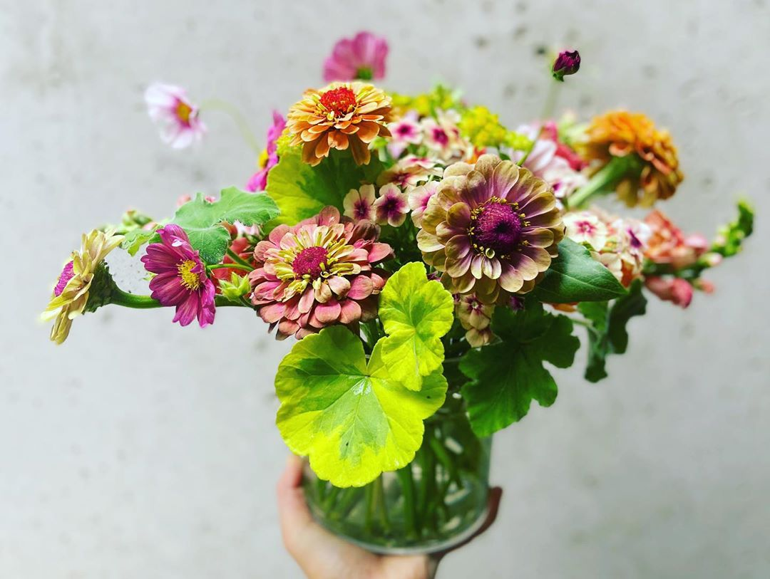 A bouquet of flowers from Birdie's Blooms.